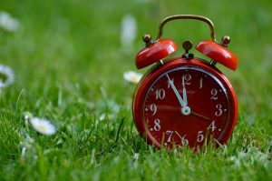 Red alarm clock in meadow